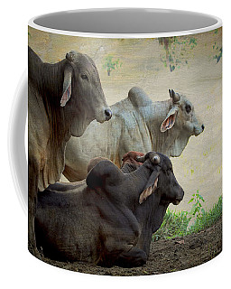 Brahman Cattle Coffee Mug