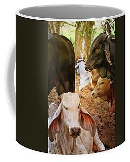 Brahman Cattle Vertical Coffee Mug