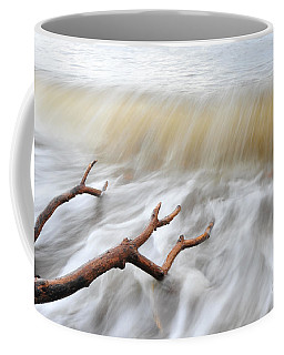 Coffee Mug featuring the photograph Branches In Water by Randi Grace Nilsberg