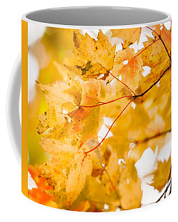 Branching Yellow Coffee Mug
