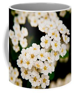 Bridal Veil Spirea Coffee Mug