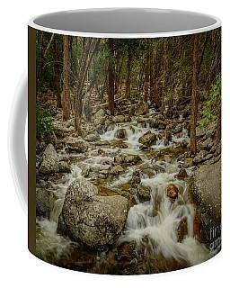Bridalveil Creek In Yosemite Coffee Mug