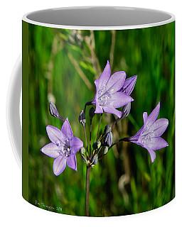 Coffee Mug featuring the photograph Bridges' Triteleia by Jim Thompson