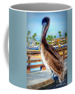 Brief Pelican Encounter  Coffee Mug