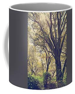 Brightening Up The Day Coffee Mug