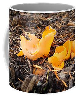 Brilliance In Orange Coffee Mug by Cheryl Hoyle