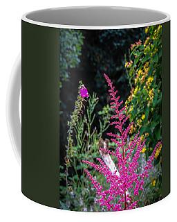 Brilliant Astilbe In Markree Castle Gardens Coffee Mug