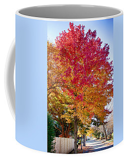 brilliant autumn colors on a Marblehead street Coffee Mug