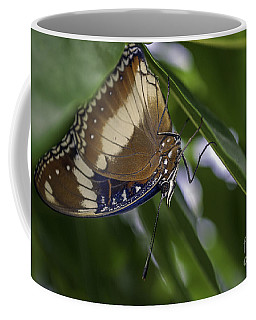 Brilliant Butterfly Coffee Mug