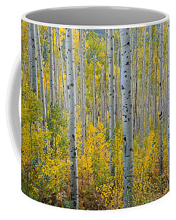 Coffee Mug featuring the photograph Brilliant Colors Of The Autumn Aspen Forest by Cascade Colors