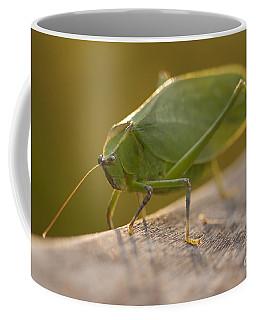 Broad-winged Katydid Coffee Mug