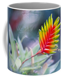 Bromeliad Beauty Coffee Mug by Eti Reid