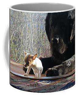 Coffee Mug featuring the photograph Brothers In Claws by Brian Boyle