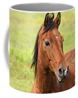 Brown Beauty Coffee Mug