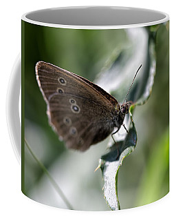 Coffee Mug featuring the photograph Brown Butterfly On Leaf by Leif Sohlman