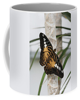 Brown Clipper Butterfly #2 Coffee Mug by Judy Whitton