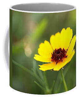 Brown Eyed Susan Coffee Mug