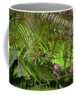 'elepaio In The Trees  Coffee Mug