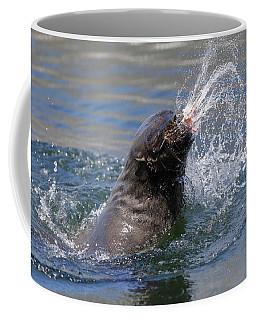 Brown Fur Seal Throwing A Fish Head Coffee Mug