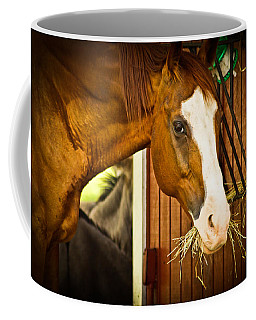 Brown Horse Coffee Mug by Joann Copeland-Paul