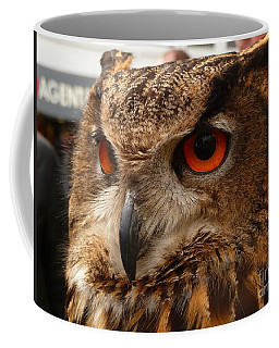 Coffee Mug featuring the photograph Brown Owl by Vicki Spindler