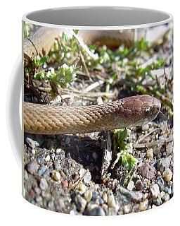 Brown Snake Coffee Mug