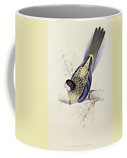 Browns Parakeet Coffee Mug