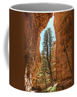Coffee Mug featuring the photograph Bryce Canyon Trees by Tammy Wetzel