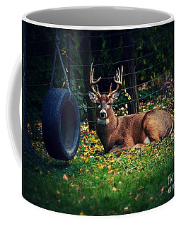 Buck In The Back Yard Coffee Mug