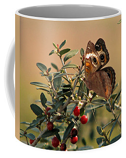 Buckeye Beauty Coffee Mug