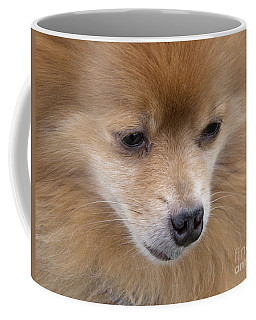 Buddy Coffee Mug