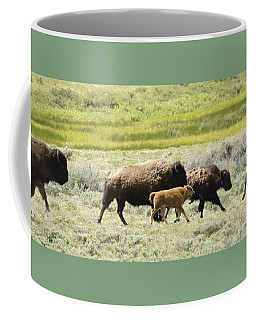 Buffalo Family Coffee Mug