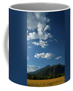Buffalo Park 1 Coffee Mug