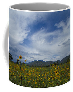 Buffalo Park Rocks Coffee Mug