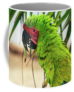 Buffons Macaw, Portrait Profile Coffee Mug