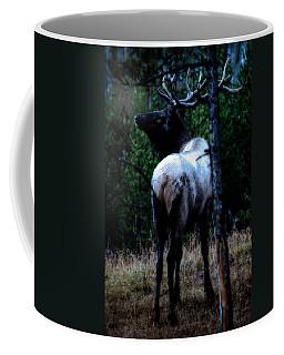 Coffee Mug featuring the photograph Bull Elk In Moonlight  by Lars Lentz