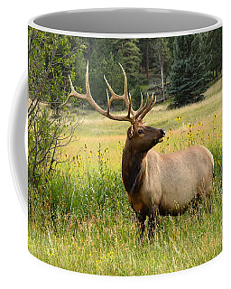 Bull Elk In Wildflowers Coffee Mug