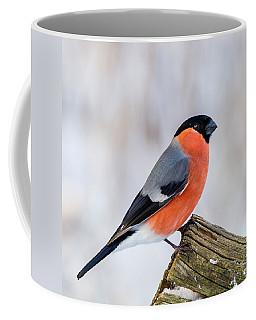 Bullfinch On The Edge Coffee Mug