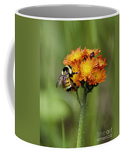 Bumble And Hawk Coffee Mug