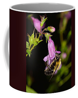 Bumble Bee On Violet Flower Coffee Mug