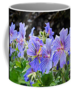 Bunches Coffee Mug by Clare Bevan