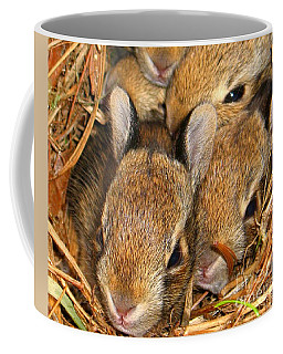 Bunny Babies Coffee Mug