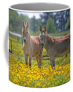 Burros In The Buttercups Coffee Mug