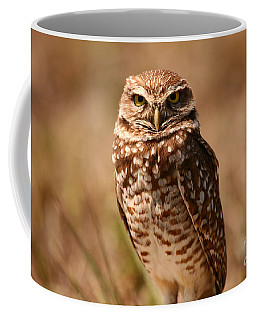 Coffee Mug featuring the photograph Burrowing Owl Impressions by John F Tsumas