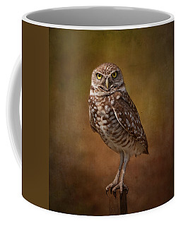 Coffee Mug featuring the photograph Burrowing Owl Portrait by Kim Hojnacki
