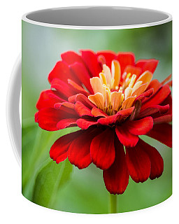 Bursts Of Color Coffee Mug by Parker Cunningham