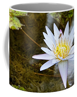 Coffee Mug featuring the photograph Busy Bee by Dave Files
