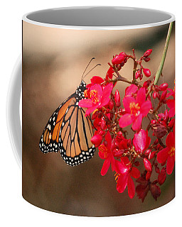 Coffee Mug featuring the photograph Butterfly 1 by Leticia Latocki