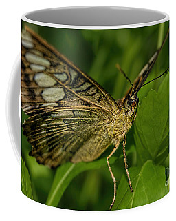 Coffee Mug featuring the photograph Butterfly 2 by Olga Hamilton