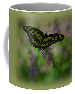Coffee Mug featuring the photograph Butterfly 4 by Leticia Latocki